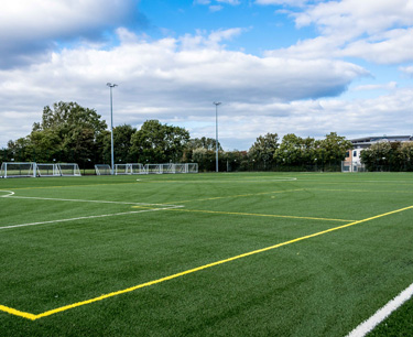Picture of 3G Pitch